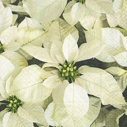 Paper+Design - Lot 20 Serviettes en papier Poinsettias Blancs 33x33cm
