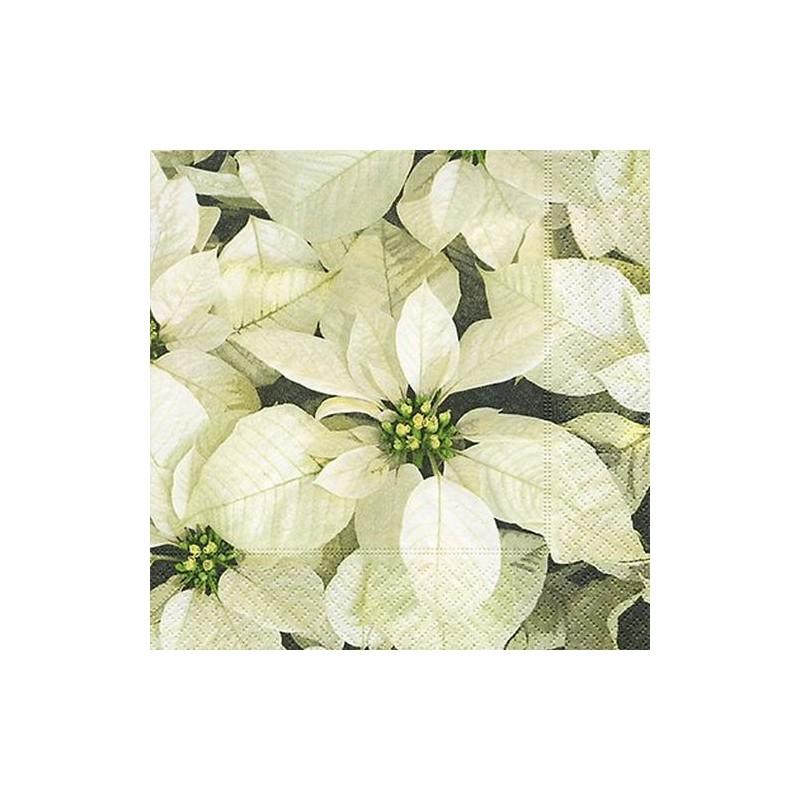 Paper+Design - Lot 20 Serviettes en papier Poinsettias Blancs 33x33cm