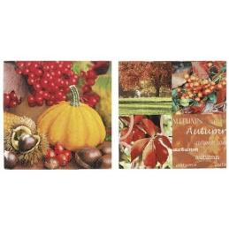 Paper+Design - Lot 20 Serviettes en papier Courge Fruits 33x33cm