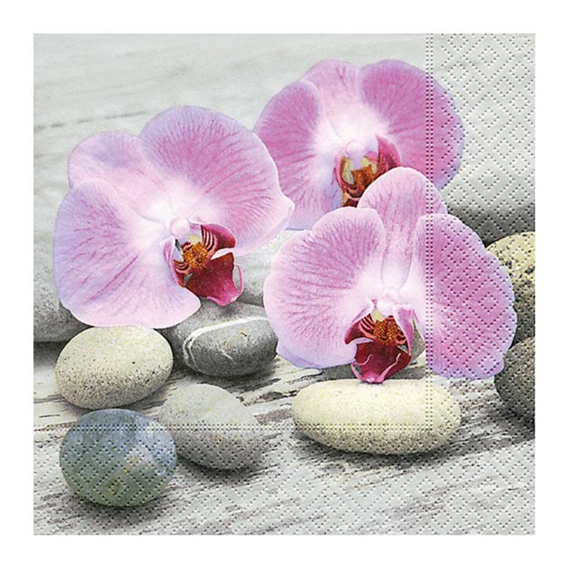 Paper+Design - Lot 20 Serviettes en papier Orchidée sur Galet 33x33cm